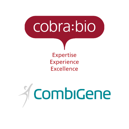 Cobra Biologics successfully completes key milestone in CombiGene's epilepsy project CG01 with delivery of first DNA plasmid