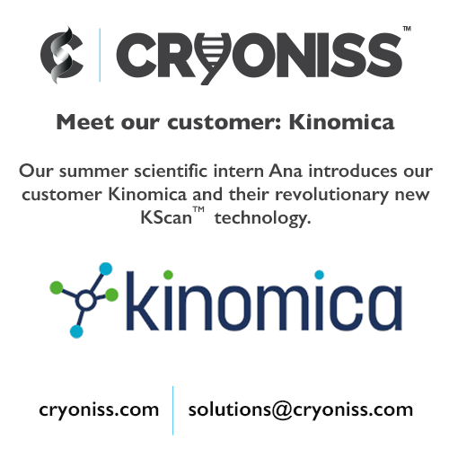 Meet our customer: Kinomica Ltd.